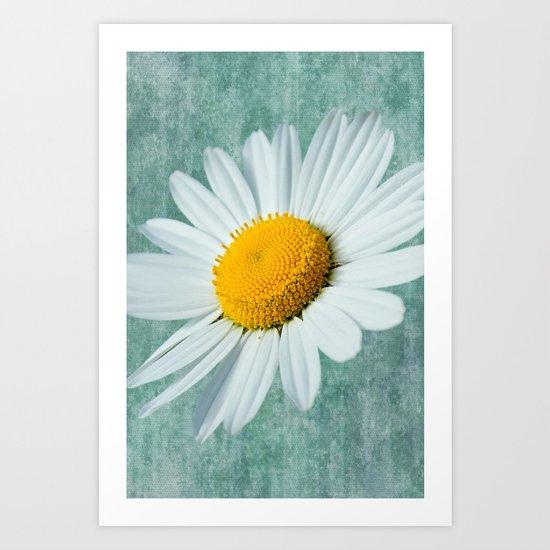 Daisy Head Art Print
