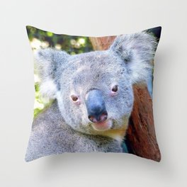 Extraordinary Animals- Koala Throw Pillow
