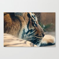 tigger Canvas Prints featuring Tigger by Josef Roesler