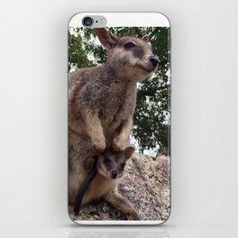 Australian wallaby baby iPhone Skin