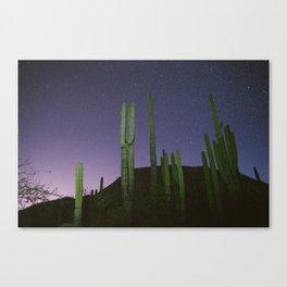 The Desert At Night Canvas Print
