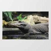 crocodile Area & Throw Rugs featuring Crocodile by Falko Follert Art-FF77