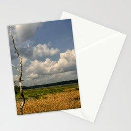 Salt Marsh Stationery Cards