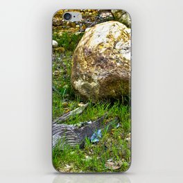 The Amazon Rock - Amazon, Brazil iPhone Skin