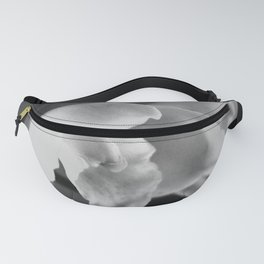 That Midas Touch - BW Fanny Pack