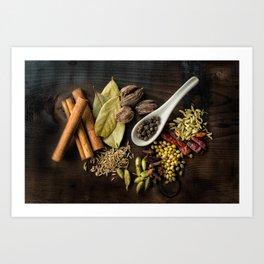 Beautiful Spices Art Print