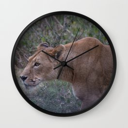 Prowling Lioness Wall Clock
