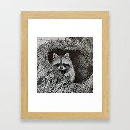 lil bandit Framed Art Print