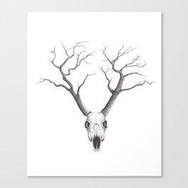 NO RAIN MY DEER Canvas Print