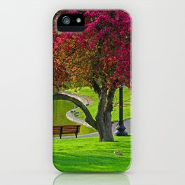 The park  iPhone Case
