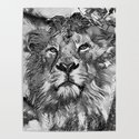AnimalArtBW_Lion_20170607_by_JAMColorsSpecial by jamcolorsspecial