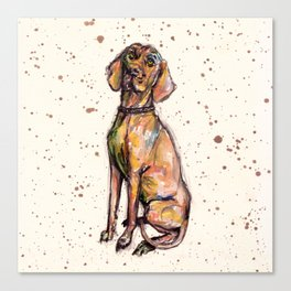 Hungarian Vizsla Dog Canvas Print