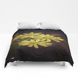 Yellow Wild Daisy  Comforters