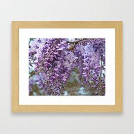 Spring Botanical -- Wisteria Lane, Boldly -- Floral Purple, Lavender and Orchid Landscape Framed Art Print