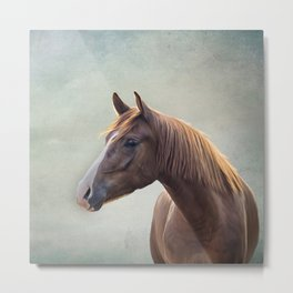 Horse. Drawing portrait Metal Print