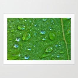 Wassertropfen Art Print