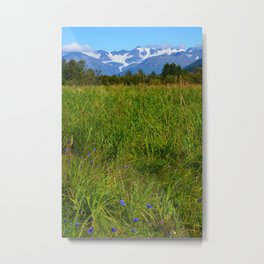 Alaskan Mountain Glacier with Wildflowers Metal Print