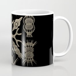 """""""Spumellaria"""" from """"Art Forms of Nature"""" by Ernst Haeckel Coffee Mug"""