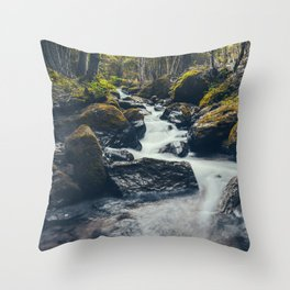 Just Like A Dream Throw Pillow