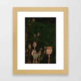 'Tealit' Garden Party Framed Art Print