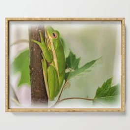 Painted Green Tree Frog Serving Tray