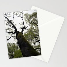 secret garden 18 Stationery Cards