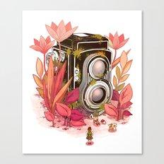 Vintage Cameras Canvas Print
