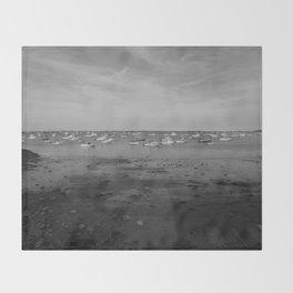 From the Shore - Plymouth Massachusetts Shoreline Throw Blanket