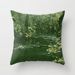 Big Creek 1 Throw Pillow