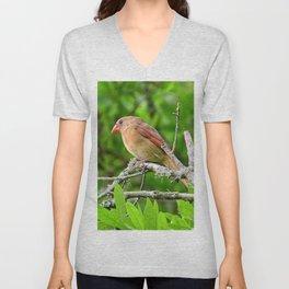 Female Cardinal Unisex V-Neck