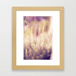 Lavender in Winter Framed Art Print