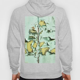 Blistered Paint Hoody