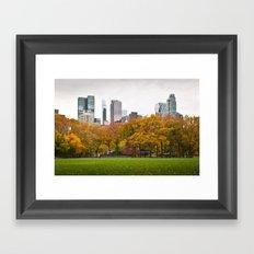 Last Autumn in Central Park Framed Art Print