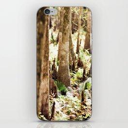 Cyprus Trees iPhone Skin