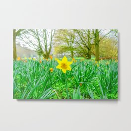 Springtime Flower Metal Print