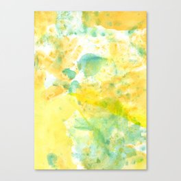 Color of the Kid Canvas Print
