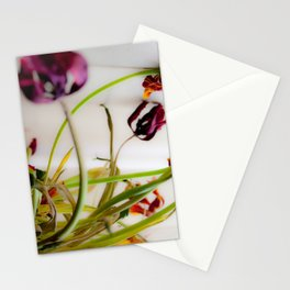 Seasons Past Stationery Cards