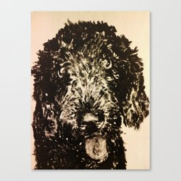 Stella the Poodle Canvas Print