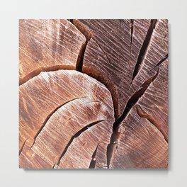 Eucalyptus Cracked Wood Natural Texture Metal Print