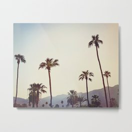 Palm Trees in the Desert Metal Print