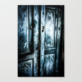 Lifes Doors Canvas Print