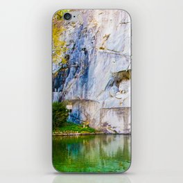 The Fallen Lion iPhone Skin