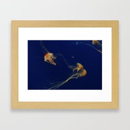 Jellyfish through the Sea Framed Art Print