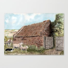 Farm Shed with Sheep Canvas Print