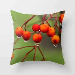 Rowan Berries with Water Droplets Throw Pillow