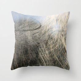 ScratchTrainWindow, Abstract No.1 Throw Pillow