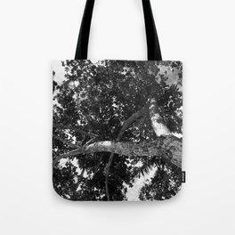 Twist tree Tote Bag