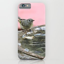 Kinglet at the Basin Rim iPhone Case