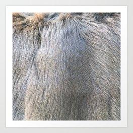 Rabbit Fur Art Print