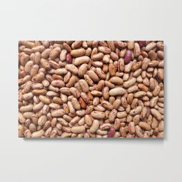 Dried borlotti beans Metal Print